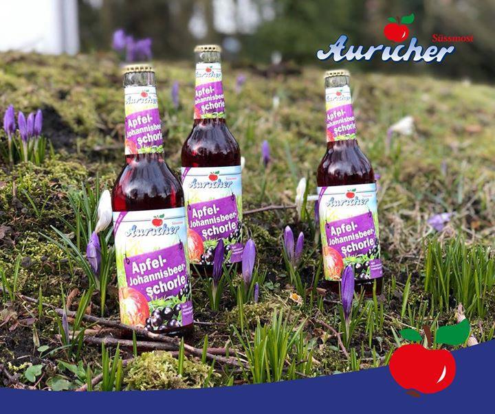 Der Frühling ist in Aurich angekommen
