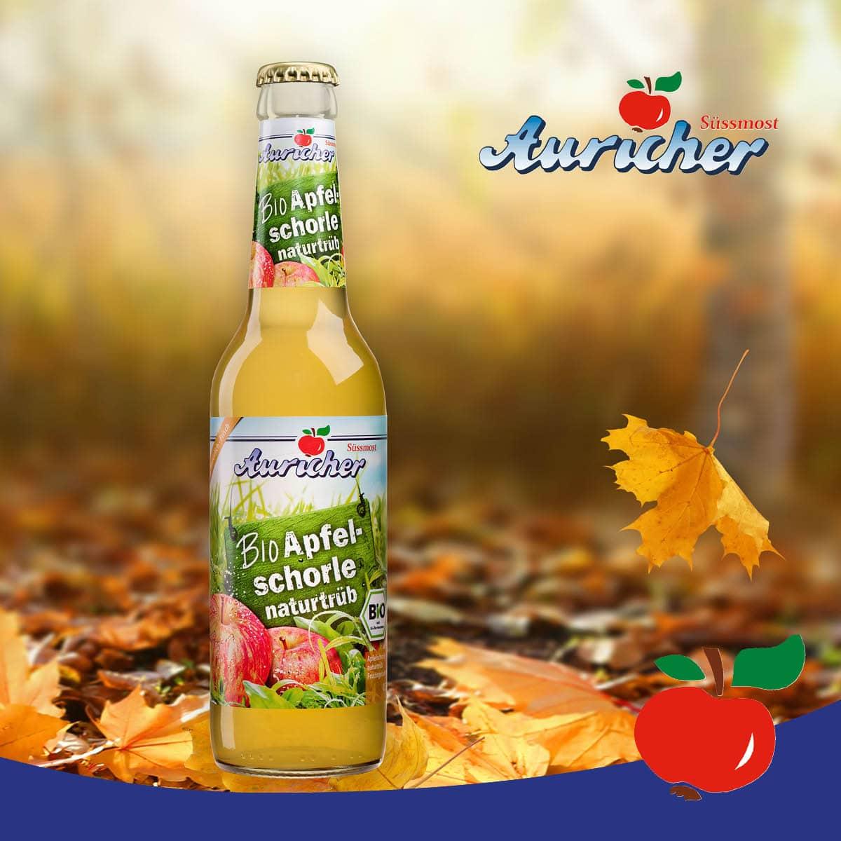 Herbstlicher Waldspaziergang